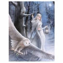 Small Midnight Messenger Canvas Picture by Anne Stokes