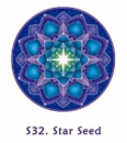 Window Sticker Star Seed